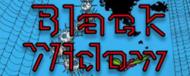 Black Widow (Arcade)